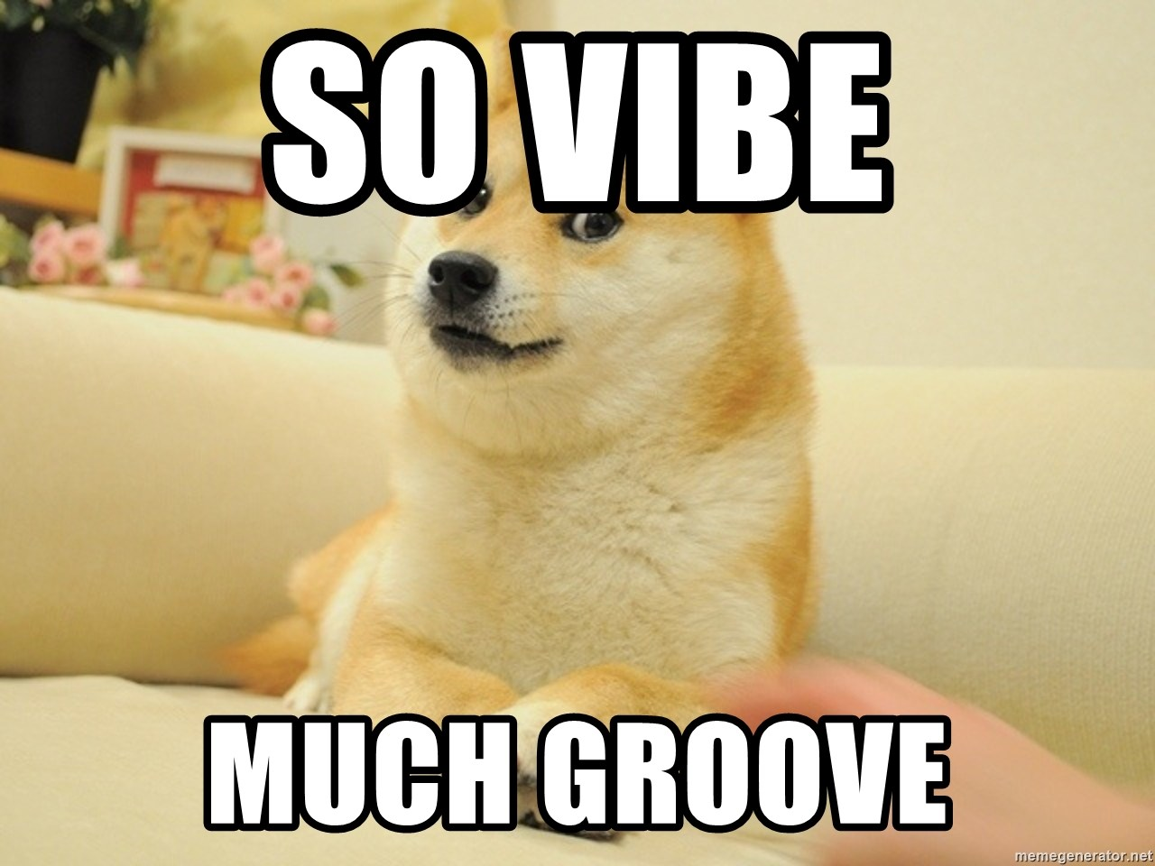 so doge - So Vibe Much Groove