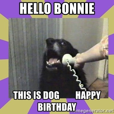 Yes, this is dog! - hello Bonnie This is dog         Happy Birthday