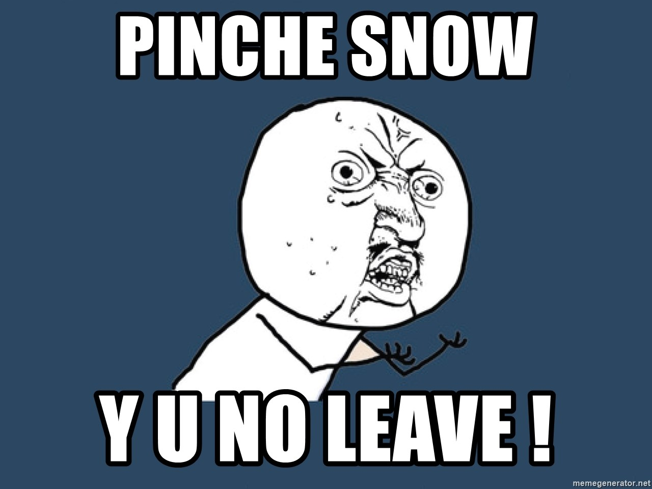 Y U No - pinche snow y u no leave !