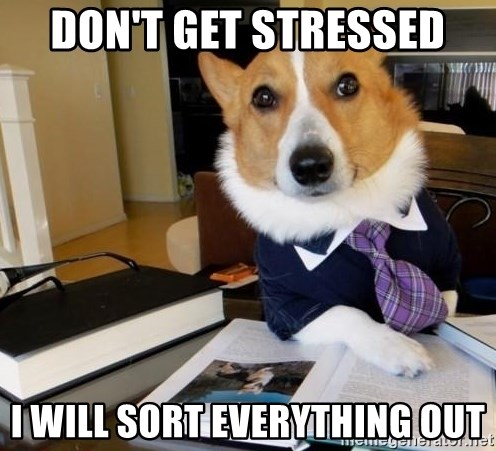 Dog Lawyer - don't get stressed I will sort everything out
