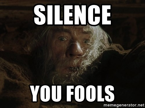 Silence You Fools Gandalf Run You Fools Closeup Meme Generator