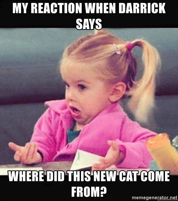 I have no idea little girl  - My reaction when Darrick says Where did this new cat come from?