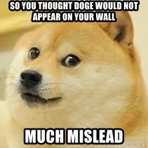 dogeee - So you thought Doge would not appear on your wall much mislead