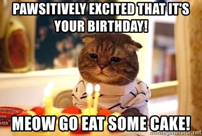 Birthday Cat - Pawsitively excited that it's your birthday! Meow go eat some cake!