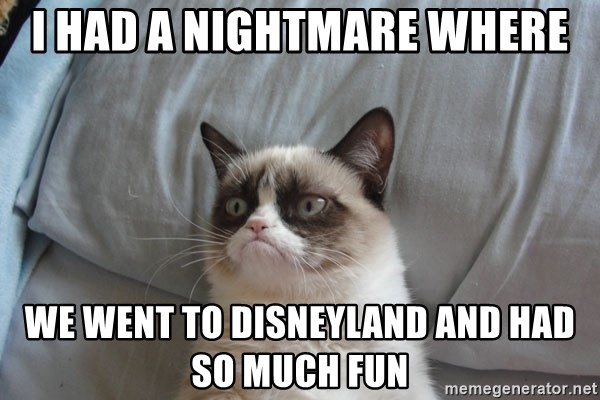 Grumpy cat good - I had a nightmare where We went to disneyland and had so much fun
