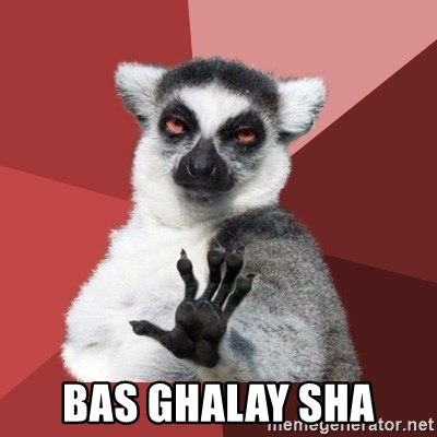 Chill Out Lemur -  BAS GHALAY SHA