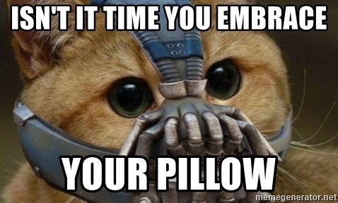 bane cat - Isn't it time you embrace Your pillow