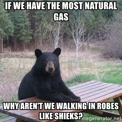 Patient Bear - If we have the most natural gas why aren't we walking in robes like shieks?