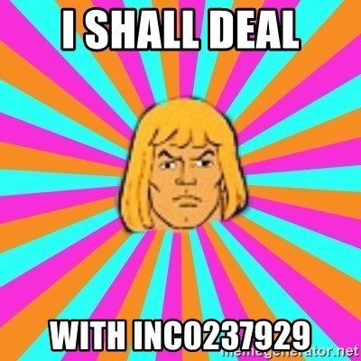 He-Man - I Shall deal with INC0237929