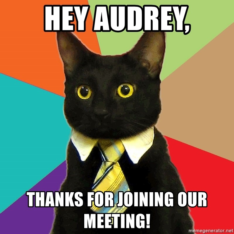 Business Cat - Hey Audrey, Thanks for joining our meeting!