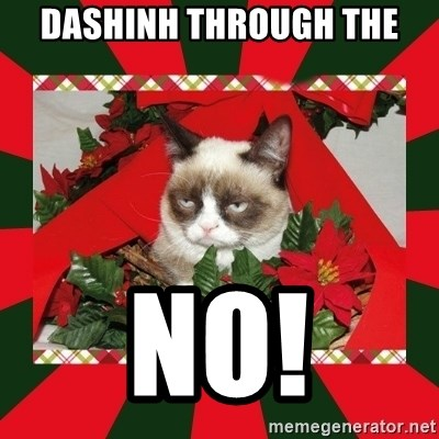 GRUMPY CAT ON CHRISTMAS - dashinh through the no!