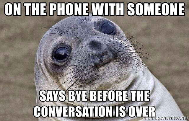 Awkward Seal - On the phone with someone says bye before the conversation is over