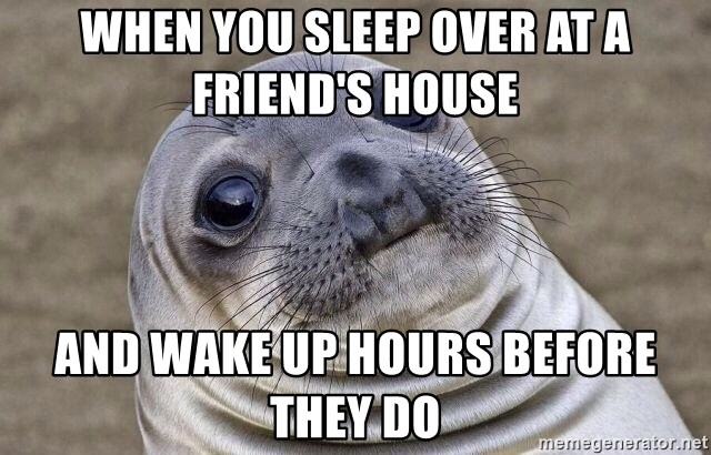 Awkward Seal - When you Sleep Over at a friend's house and wake up hours before they do
