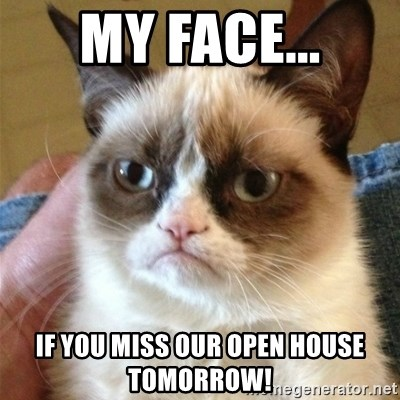 Grumpy Cat  - My face... If you miss our open house tomorrow!