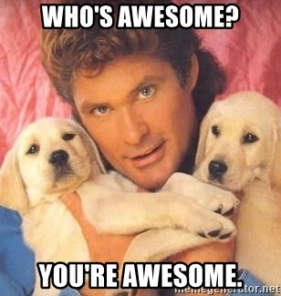 David Hasselhoff puppy - Who's awesome? You're Awesome.