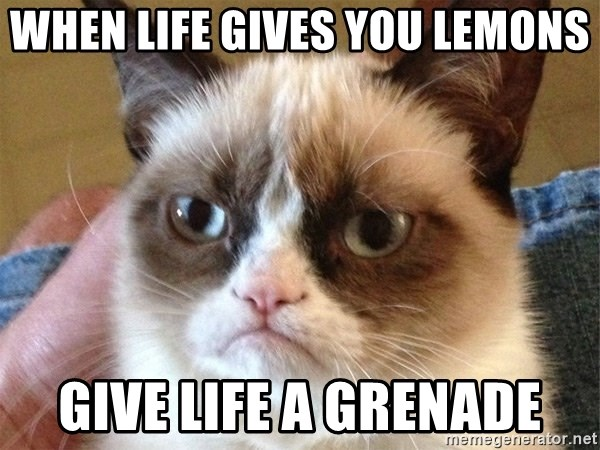 Angry Cat Meme - when life gives you lemons Give life a grenade