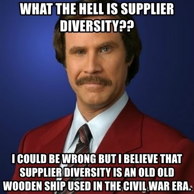 What The Hell Is Supplier Diversity I Could Be Wrong But I Believe