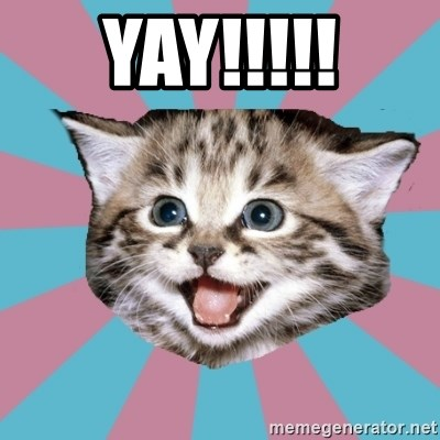 Yay Overly Excited Cat Meme Generator More majestic cat yay memes… this item will be deleted. yay overly excited cat meme