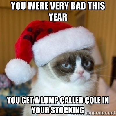 Grumpy Cat Santa Hat - you were very bad this year you get a lump called cole in your stocking