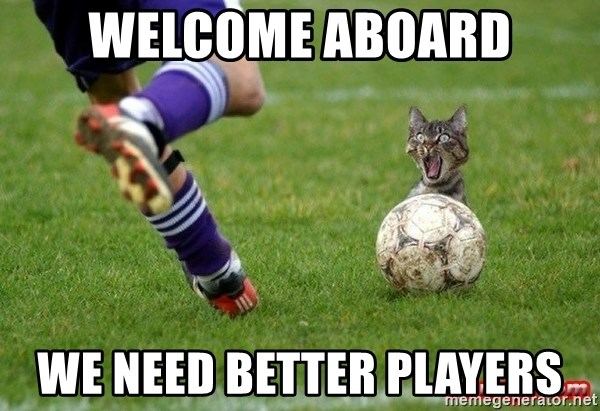Soccer Cat - Welcome aboard We need better players
