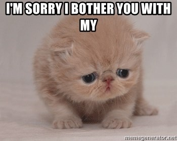 Super Sad Cat - I'm sorry I bother you with my