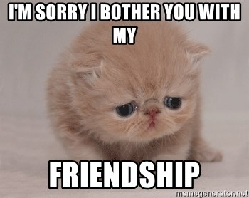 Super Sad Cat - I'm sorry I bother you with my Friendship