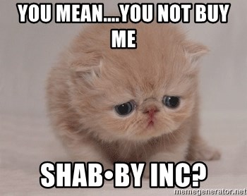 Super Sad Cat - You mean....you not buy me  Shab•by Inc?