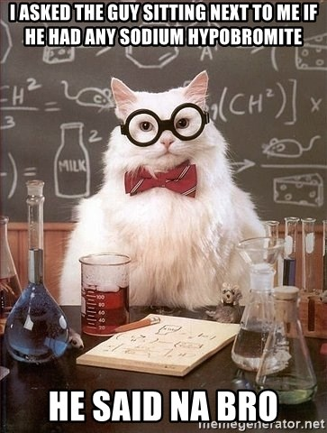 Chemistry Cat - I asked the guy sitting next to me if he had any sodium hypobromite he said Na bro
