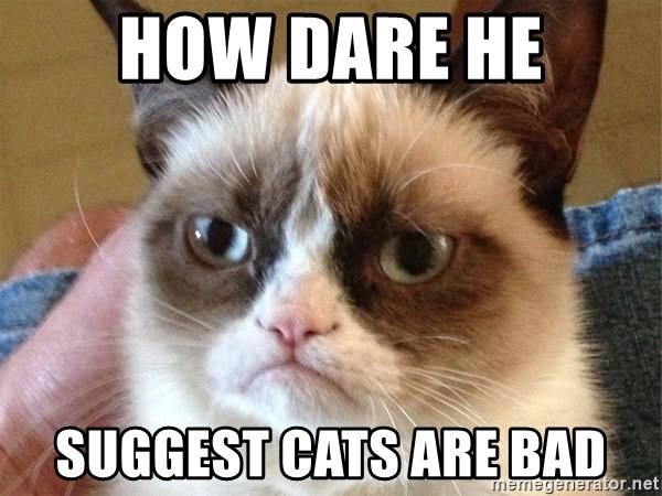 Angry Cat Meme - how dare he suggest cats are bad