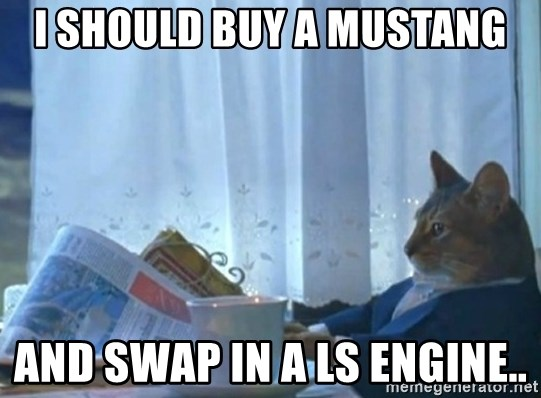 newspaper cat realization - I should buy a mustang and swap in a ls engine..