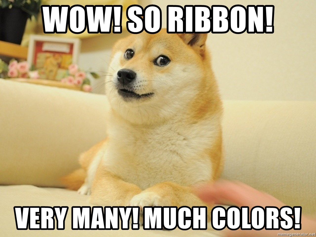 so doge - Wow! So ribbon! Very many! Much colors!