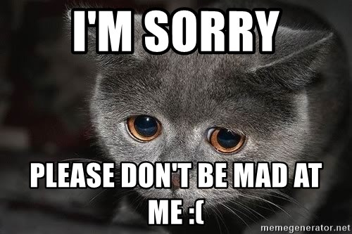 Sadcat - I'm sorry Please don't be mad at me :(