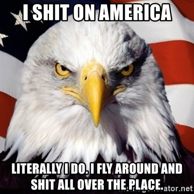 Freedom Eagle  - i shit on america literally i do. i fly around and shit all over the place.