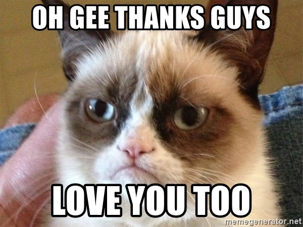 Angry Cat Meme - Oh gee thanks guys Love you too