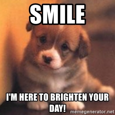 Smile I'm here to brighten your day! - cute puppy | Meme ...