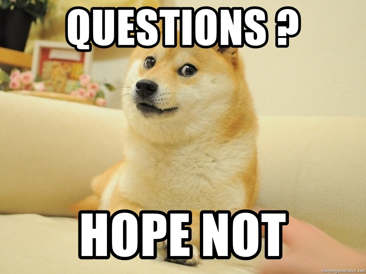 so doge - Questions ? Hope not