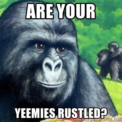 Jimmies Rustled - Are your yeemies rustled?