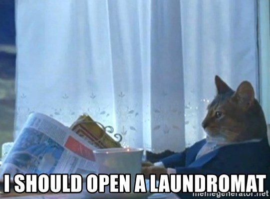 newspaper cat realization -  I should open a laundromat