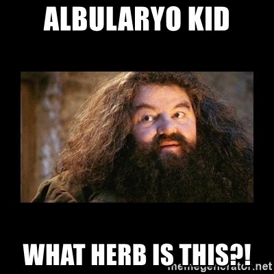You're a Wizard Harry - Albularyo kid what herb is this?!