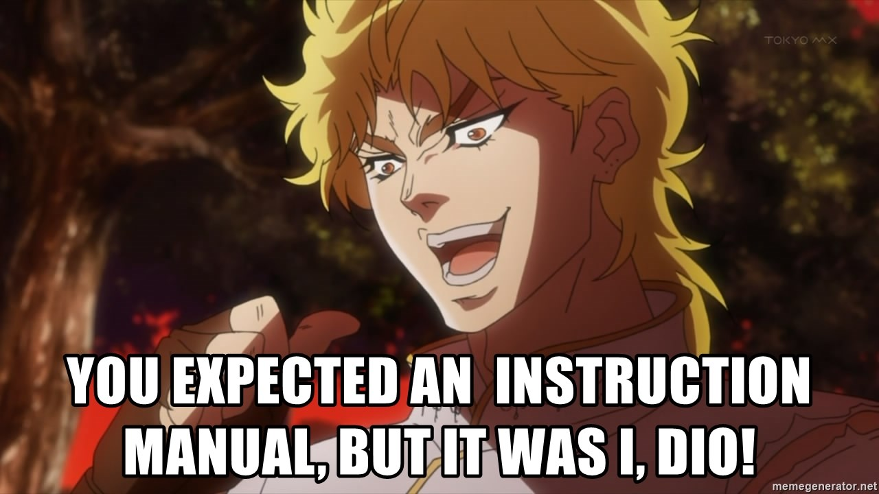 You expected an instruction manual, But it was I, Dio! - You