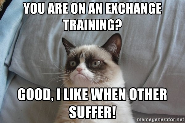 Grumpy cat good - You are on an exchange training? Good, i like when other suffer!
