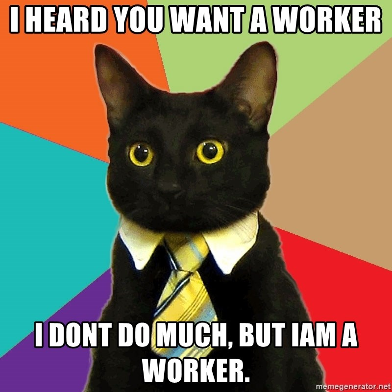 Business Cat - i heard you want a worker i dont do much, but iam a worker.