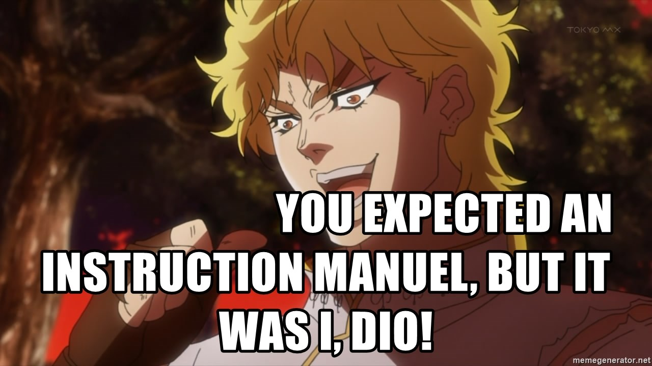 YOU EXPECTED AN INSTRUCTION MANUEL, but it was i, dio! - But it was