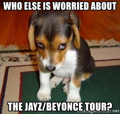 Sad Puppy - who else is worried about the jayz/beyonce tour?