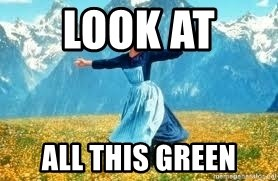 Look at all these - Look at  all this green