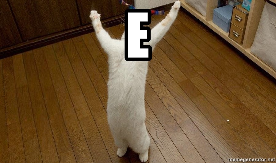 praise the lord cat - E