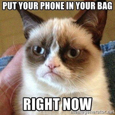 Grumpy Cat  - put your phone in your bag right now