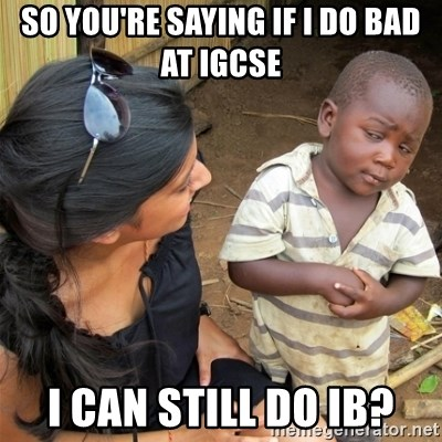 So You're Telling me - so you're saying if i do bad at Igcse I can still do IB?