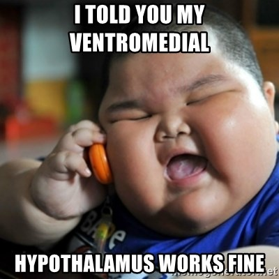 fat chinese kid - i told you my ventromedial  hypothalamus works fine