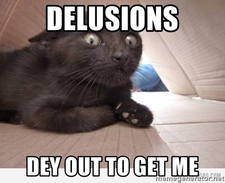 Paranoid cat - delusions dey out to get me